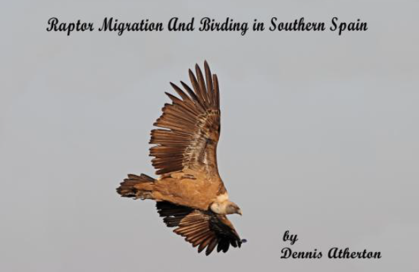 Raptor migration in Southern Spain and Gibraltar'